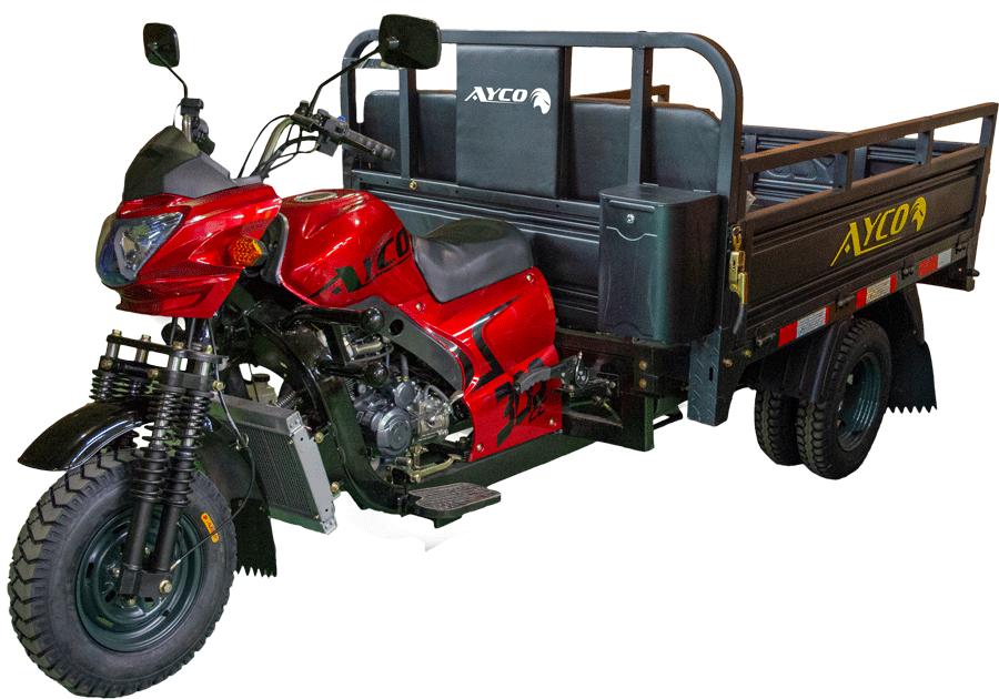 Ayco-300-Modelo-2021-small